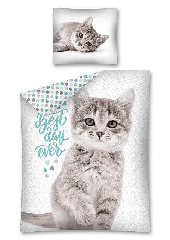 DETEXPOL Povlečení Sweet Animals Kotě šedé  Bavlna, 140/200, 70/80 cm