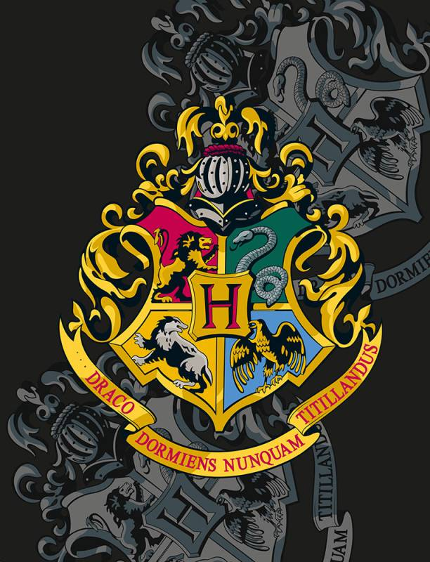 HALANTEX Fleece deka Harry Potter  Polyester, 130/170 cm