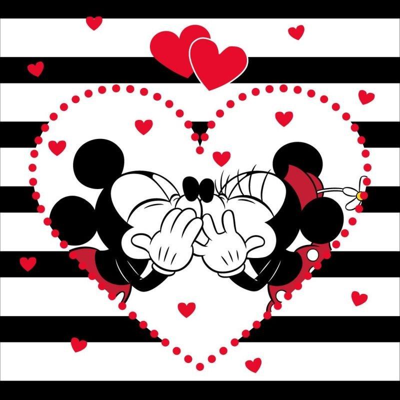 Povlak na polštářek Mickey a Minnie stripes micro 40/40